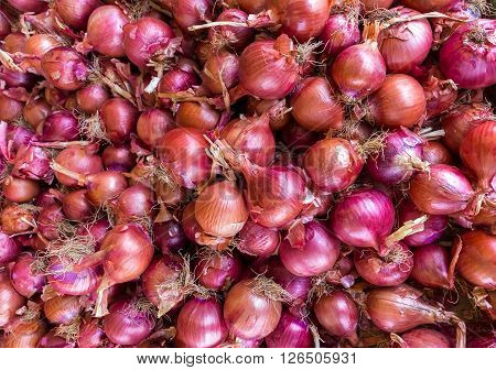 Heap of red onions on market place