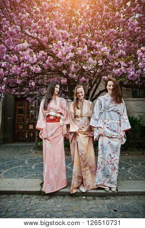Three European Girls Wearing Traditional Japanese Kimono Background Blossom Pink Sakura Tree