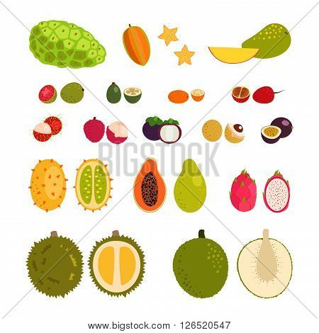 Set of flat cartoon vector illustration tropical exotic fruits.  Isolated objects.