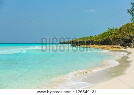 Beautiful charming wide open view of natural tropical background on warm bright sunny day