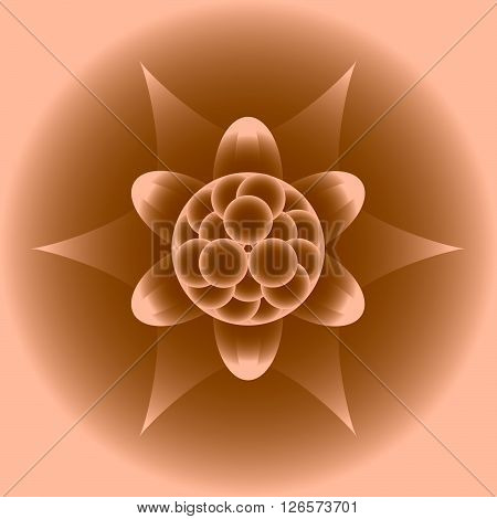vector floral pattern in a square in eps 10 format