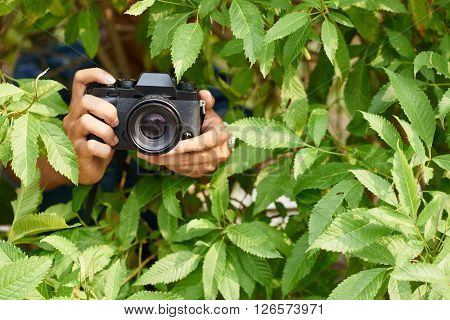 Photographer hiding in bushes when taking photos
