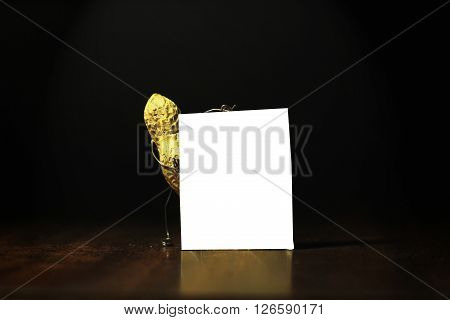 Peanut holding a blank card for advertisement in the dark back ground