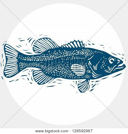 Fish Species, Vector Marine Fauna Symbol. Hand Drawn Silhouette Of Fish, Healthy Eating. Zoology The