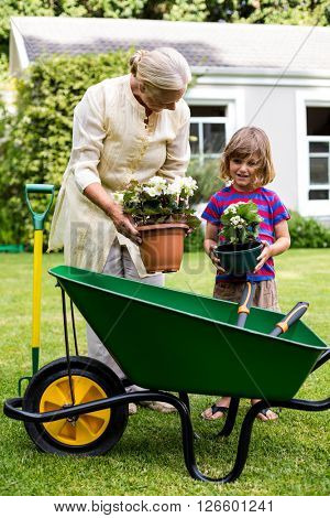 Granny and grandson holding flower pots over wheelbarrow at yard