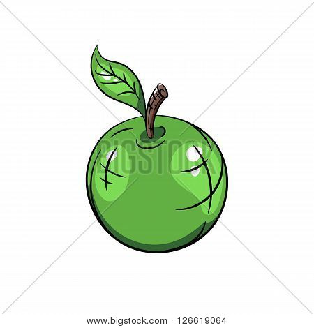Vector green apple with green leaves. Vector illustration on white background - stock vector
