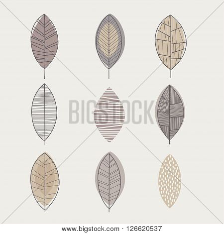 Similar Shape Leaf Hand Drawn Monochrome Set In Cool Doodle Style Color On White Background
