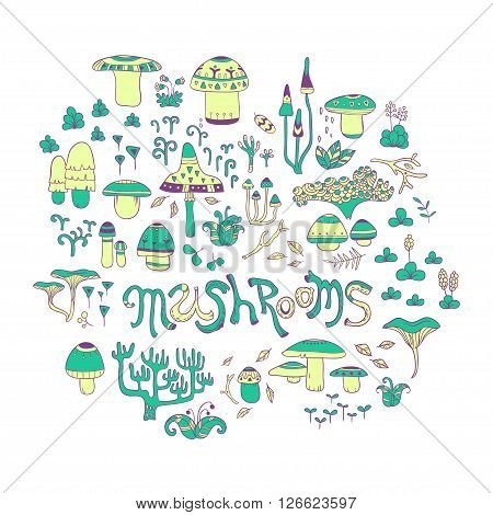 Mushrooms. vector hand drawn illustration with mushrooms and forest herbs