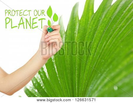 Protect our planet text and hand holding marker on palm leaf background