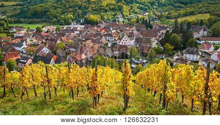 View of Andlau village surrounded by vineyards in autumn, Alsace, France
