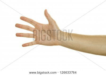 One Hand Open. Isolated on white background