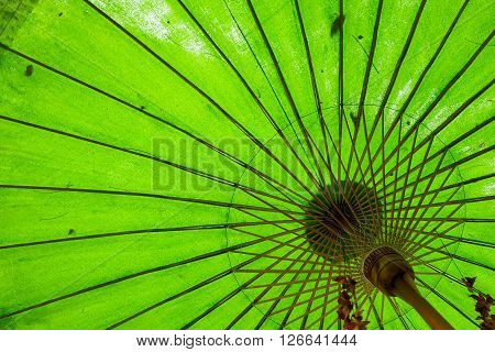 Looking up under a tilted green umbrella