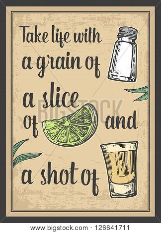 Glass tequila. salt and lime. Vector engraved illustration. Vintage beige background. For poster web.