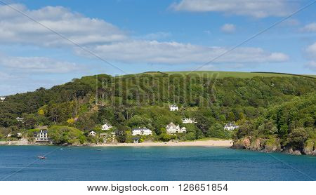Mill Bay beach Salcombe Devon uk one of several beautiful beaches in the estuary