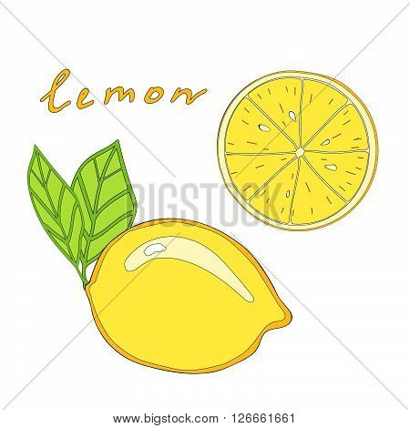 Lemon with leaf and lemon slice. Vector isolated fruit