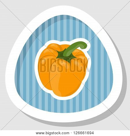 Vector illustration of bell peppers, white background