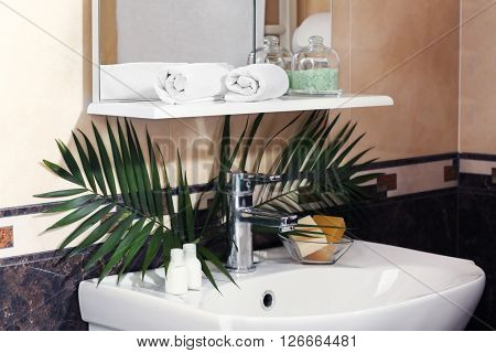 Bathroom interior with sink, shelf, towel and palm leaves