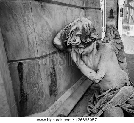 A sleeping angel at the recoleta cemetery