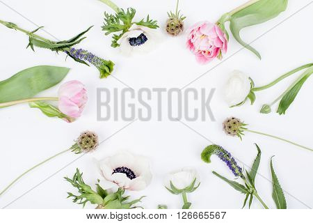 Pink tulips white anemonse pink cloves and white buttercups lying on white background from the top in the circle prepered to do bouquet