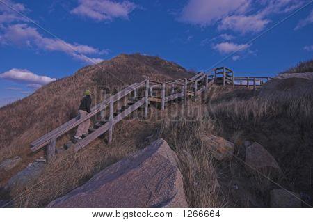 Stairway At Menemsha Hills Beach, Martha'S Vineyard