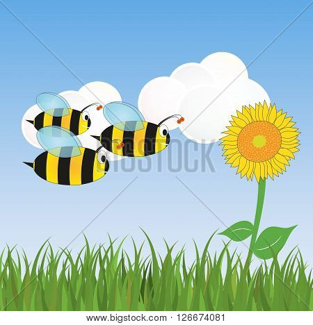 illustration of fly bees and sunflower and grass
