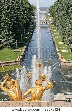 Peterhof, Russia - June 27, 2008: Gold Plated Sculptures By Fountains Grand Cascade In Pertergof, Sa