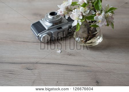 Closeup of fresh flowers on wooden table at home