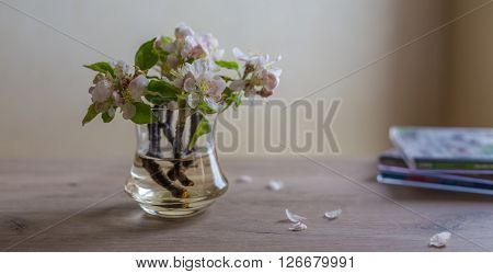 Closeup of spring flowers in vase on table