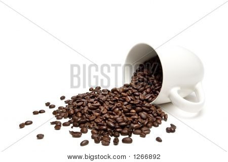 Spilt Coffee Beans Isolated On White