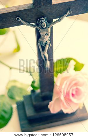 Jesus Christ on the Cross and pink rose