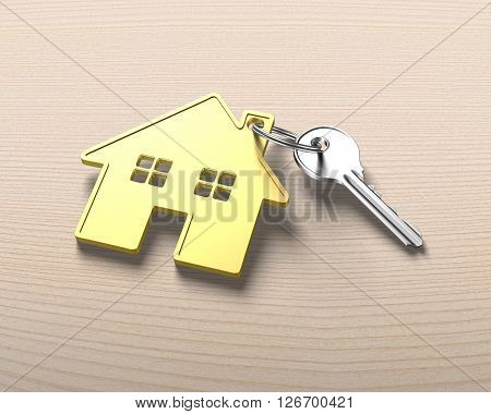 Silver Key And Gold House Shape Key Ring