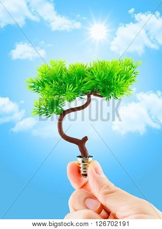 Hand Holding Tree Growing On Light Bulb With Light Blue Sky With Cloud,eco Concept,eco Power
