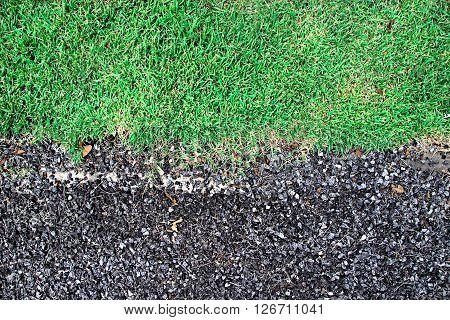 Bedrock Mixer and Green grass ,texture background