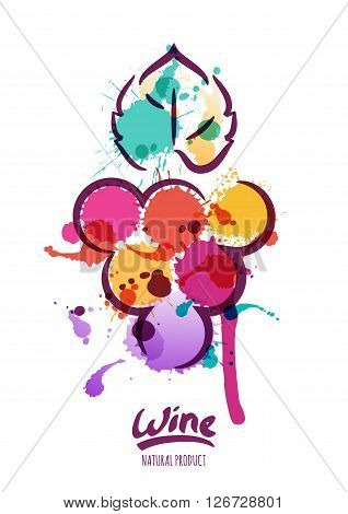 Vector Watercolor Illustration Of Colorful Grapes Vine.