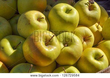 Yellow Apple Fruit