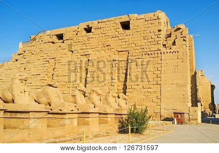 LUXOR EGYPT - OCTOBER 7 2014: The great statues of the Ram Headed Sphinxes stand along the way to the Karnak Temple  on October 7 in Luxor.