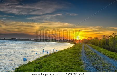 The river Rhine at sunset
