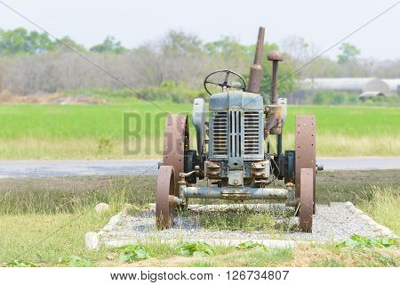 the antique tractor in the rice farm