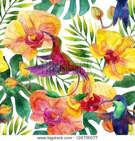 Seamless pattern with humming-birds and orchid flowers on white background