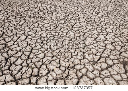 Dry Soil Arid. Drought Land Textured Backgrounds