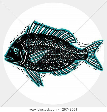 Vector drawn freshwater fish silhouette natural graphic symbol. Fauna and wildlife element zoology species.