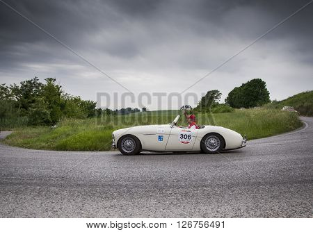 PESARO, ITALY - MAY 15: AUSTIN HEALEY 100/4 1954 on an old racing car in rally Mille Miglia 2015 the famous italian historical race (1927-1957) on May 2015