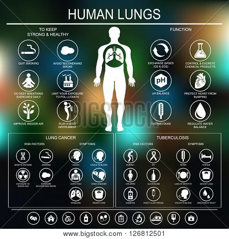 Medical infographics. Lungs function and health. Lung cancer and tuberculosis: risk factors and symptoms. Vector illustration.