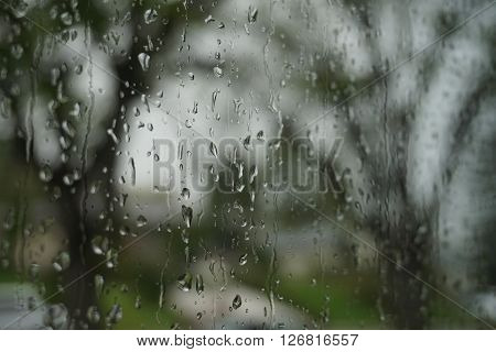 Looking out the window on a rainy day