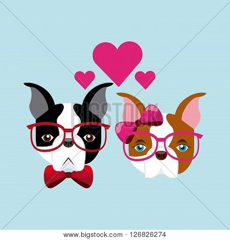 french bulldog design, vector illustration eps10 graphic
