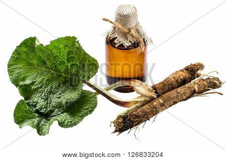 Medicinal plant - a burdock. The roots and leaves of burdock burdock oil in bottle isolated on white background. It is used for the treatment and care of hair