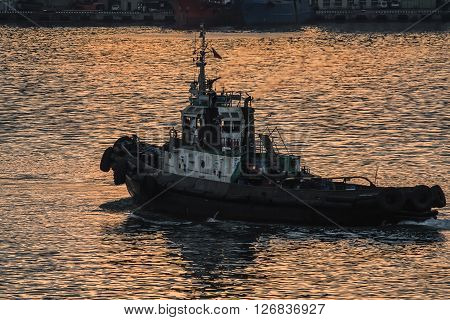 tugboat sails on the sea at sunset