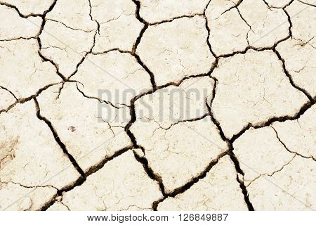 Land dried up by drought