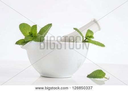 herbal medicine concept mint in a white mortar
