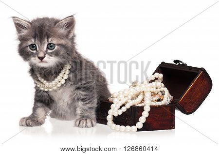Cute little kitten with pearl necklaces isolated on white background